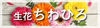 花、花束の販売は和歌山の生花ちわひろ。プリザーブドフラワー、供花、アレンジ、ブーケ等。